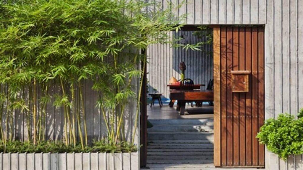 Tre, trúc cảnh được dùng trong các thiết kế căn hộ hiện đại