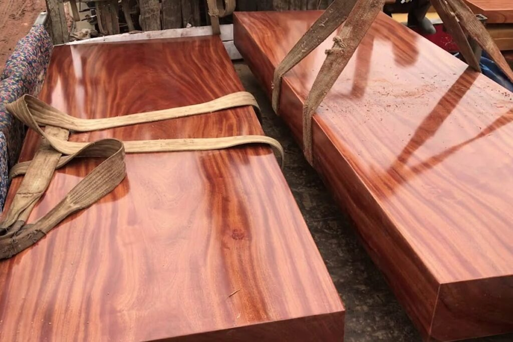 Gỗ đinh hương có khối lượng lớn hơn các loại gỗ khác. (Ảnh sưu tầm)