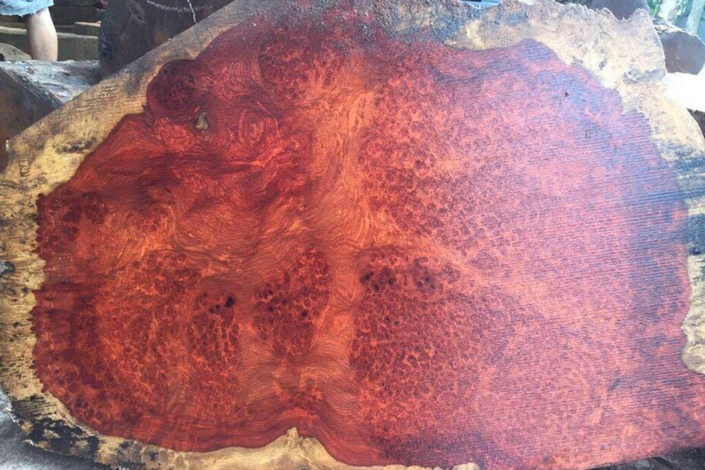 Gỗ hương Campuchia có nhiều điểm tương đồng với gỗ hương Lào. (Ảnh sưu tầm)