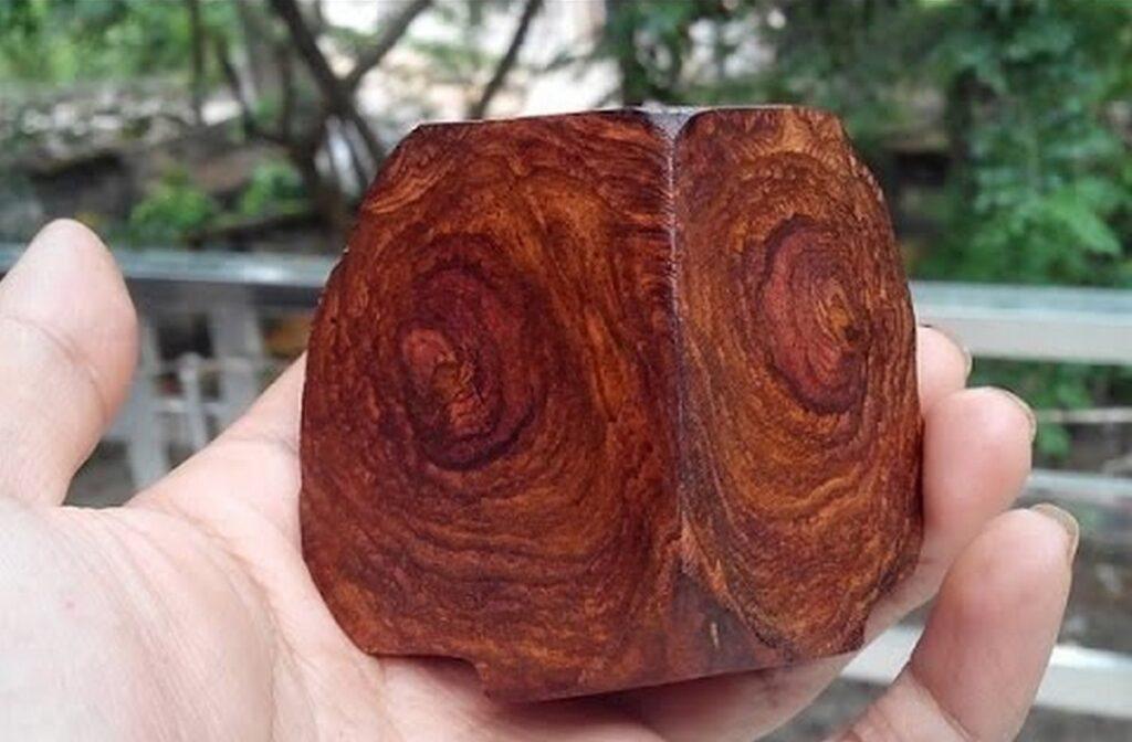 Gỗ sưa đỏ có vân bốn mặt, đường vân gỗ và màu sắc đẹp. (Ảnh sưu tầm)