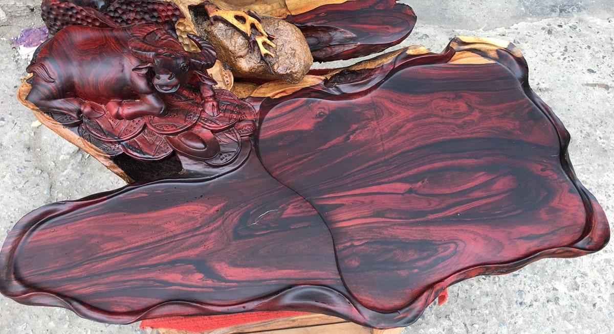 Cùng họ gỗ trắc nhưng gỗ trắc đỏ quý hiếm và được nhiều người săn lùng hơn cả. (Ảnh sưu tầm)